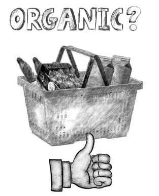 Organic food picture